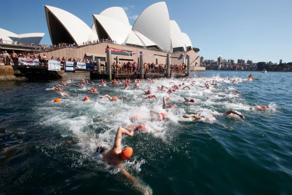 Sydney Harbour Swim Classic – Adam Wilson Events